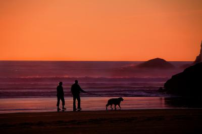 Grandparents walking on beach