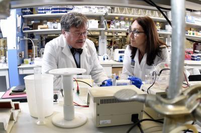 Hotez Bottazzi lab