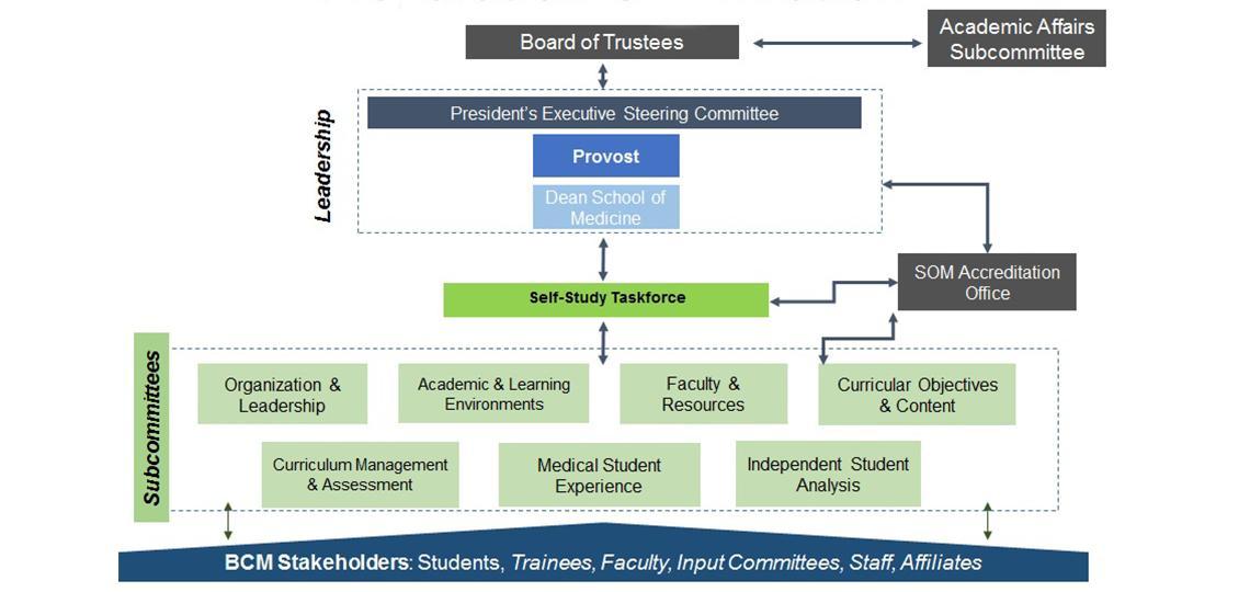 LCME Organization Chart