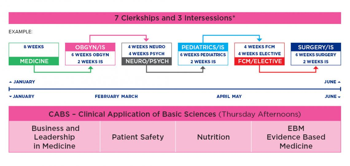 Curriculum diagram for Spring II Clinical Curriculum for M.D. students