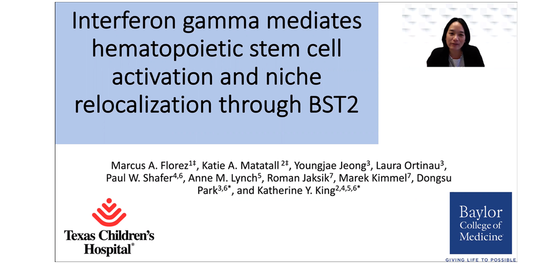 """Screenshot for a video titled """"Interferon Gamma Mediates Hematopoietic Stem Cell Activation"""""""