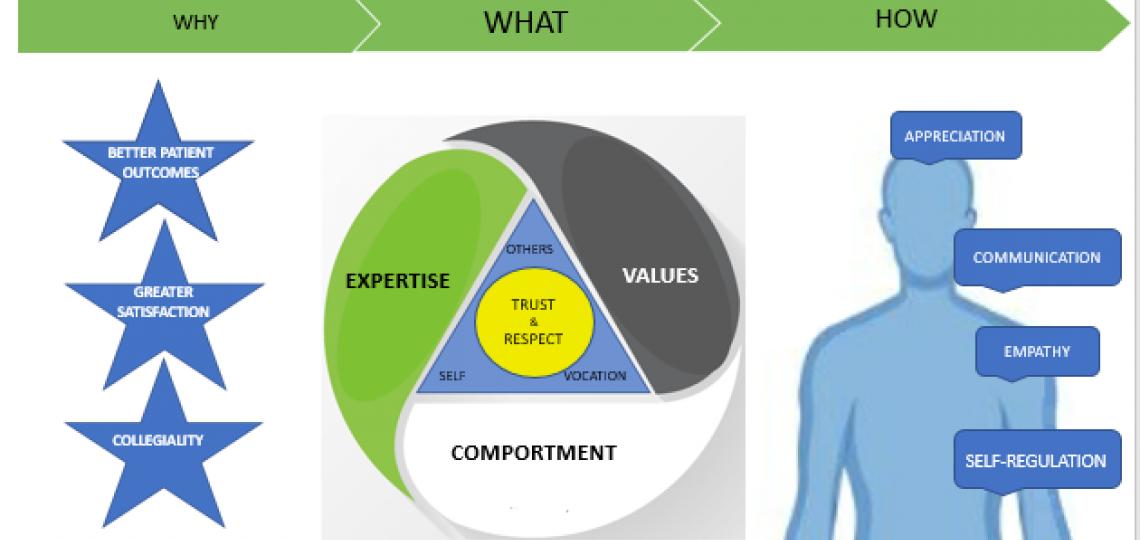 Professionalism Platform
