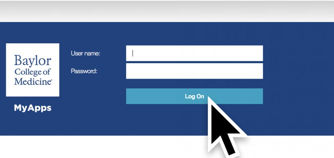 Enter your ECA credentials, then click Log On.