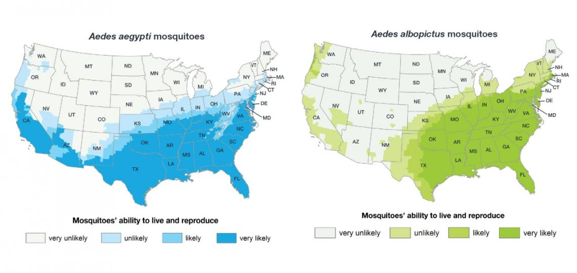 Estimated potential range of Aedes aegypti and Aedes albopictus in the United States, 2017
