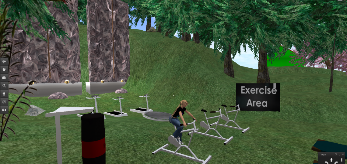 Cartoon image of Dhira, the avatar, riding an exercise bicycle, surrounded by other exercise equipment, on the CROWD Second Life island