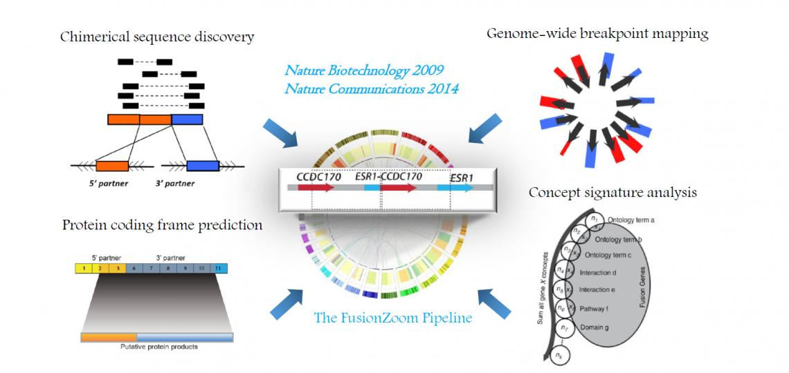 The FusionZoom Pipeline: discovering pathological recurrent gene fusions from the scrambled cancer genome.