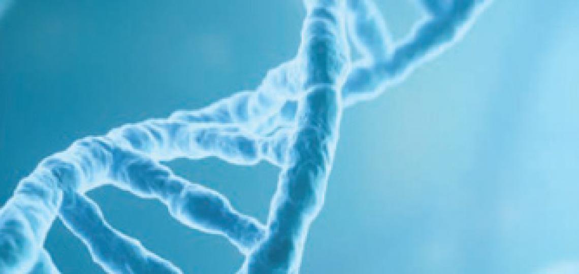 Gene Vector Core