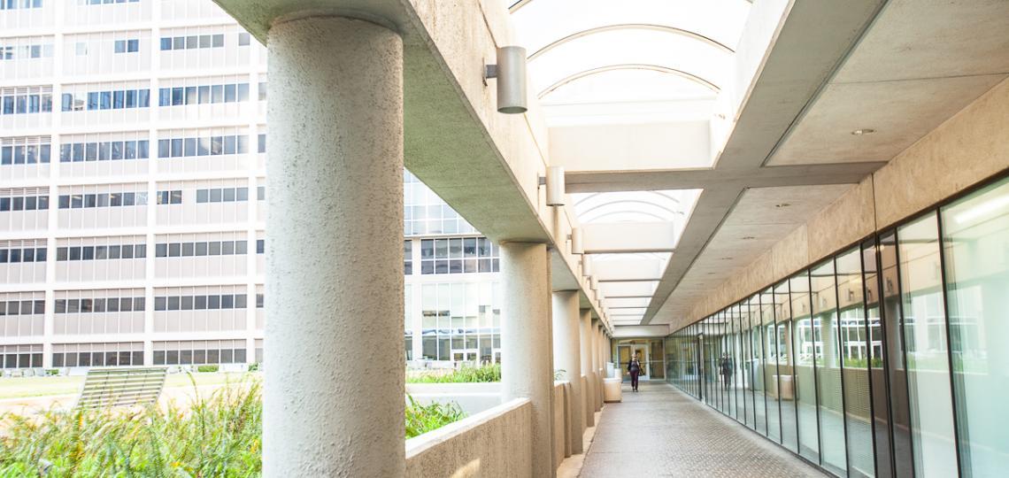 Main campus entry walkway