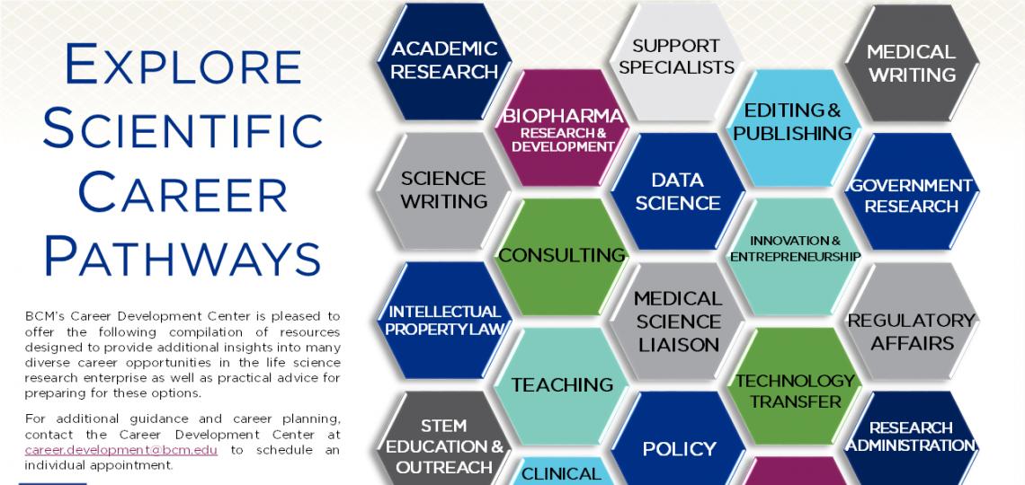 PhD Career Path Guide Thumbnail