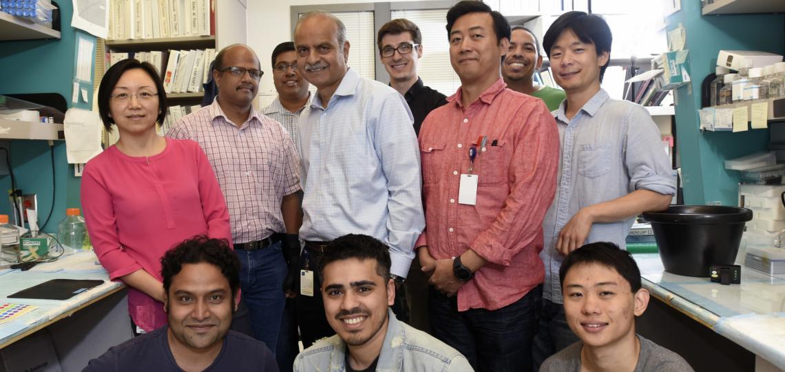 Prasad Lab 2018