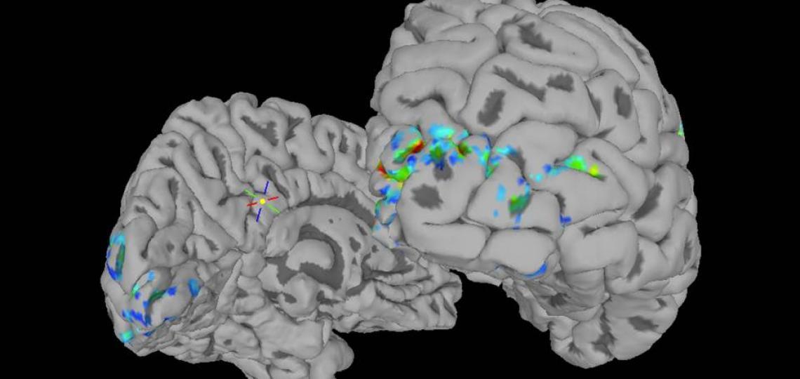 Time Encoding using functional MRI