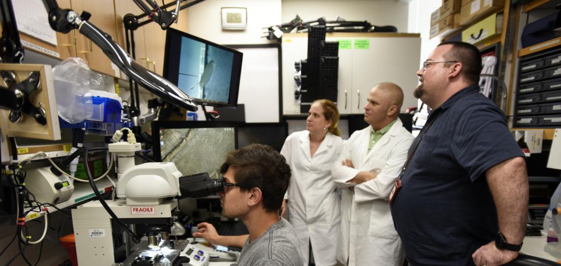 Dr. Venken discusses research findings on microscope with Nick Matinyan, Yezabel Gonzalez, and Alejandro Sarrion-Perdigones.
