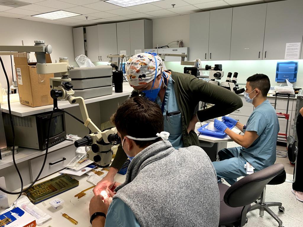 Cataract surgical wet lab – capsulorhexis