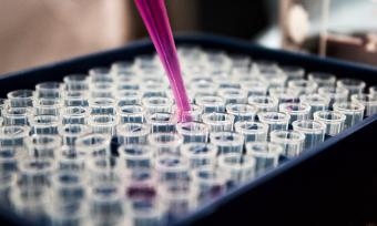 Image of pipette and test tubes
