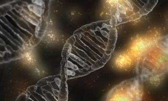 dna-stress-photo.png
