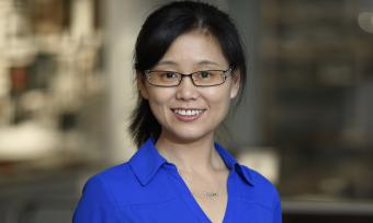 Dr. Meng Wang, associate professor in the Huffington Center on Aging and the Department of Molecular and Human Genetics at Baylor College of Medicine.