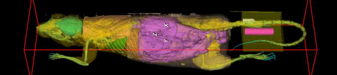 Trifoil eXplore CT 120