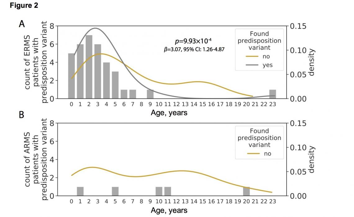 Age distribution of individuals with and without cancer predisposition variants
