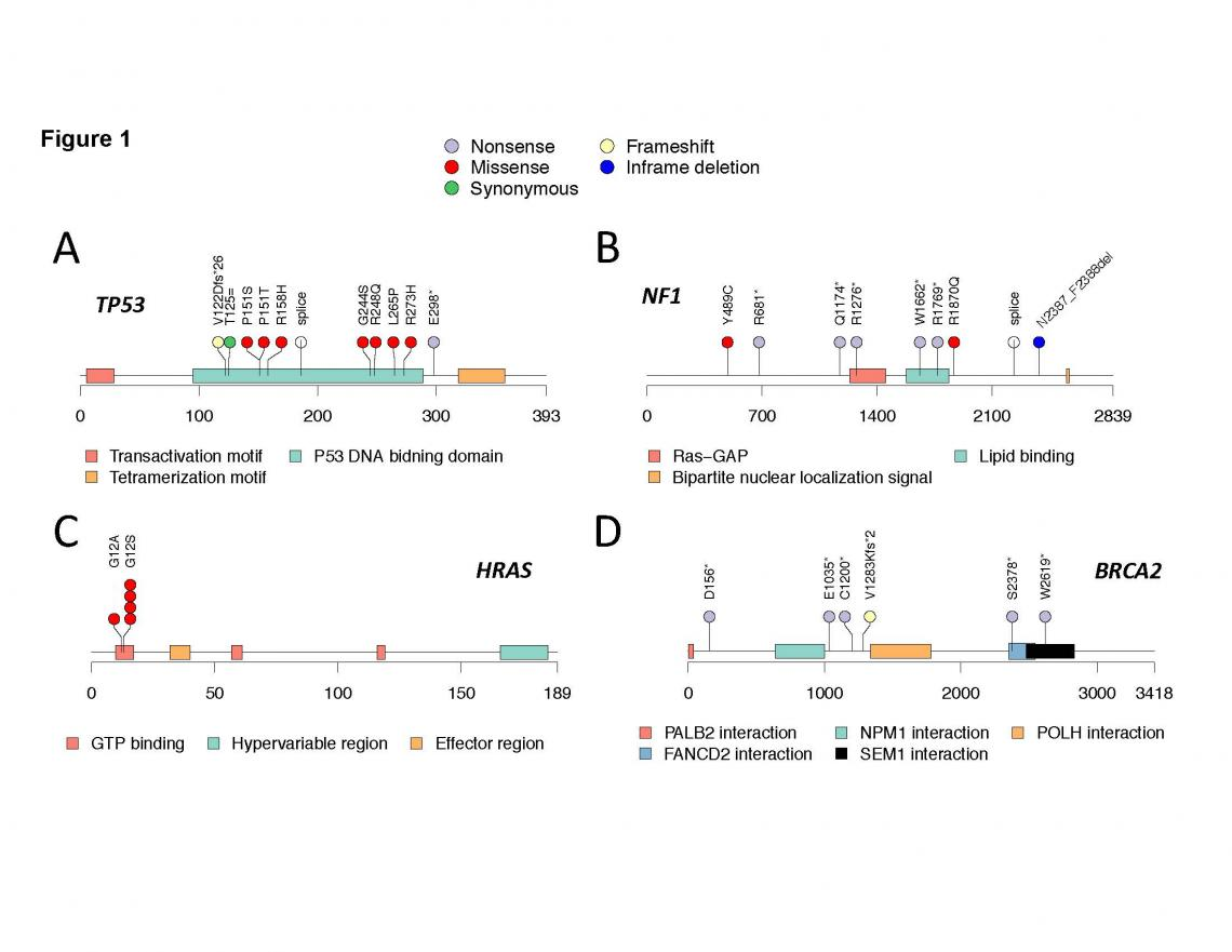 Genetics of Embryonal and Alveolar Rhabdomyosarcoma Study