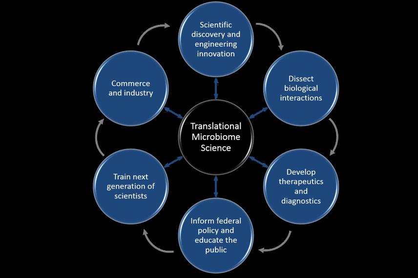 TMS Diagram