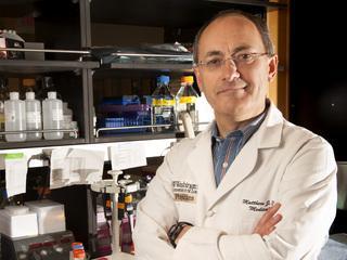 Matthew Ellis, M.D., Ph.D.
