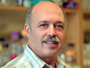 Paul Pfaffinger, Ph.D.