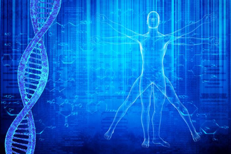 Vitruvian Man and Double Helix