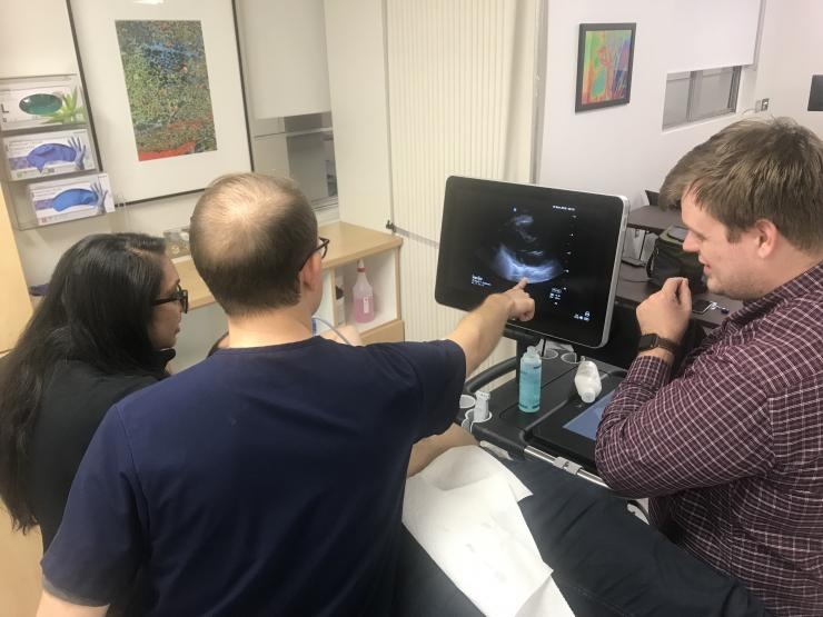 Internal medicine residents engaged with the POCUS curriculum.