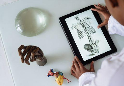 Person looking at anatomy study