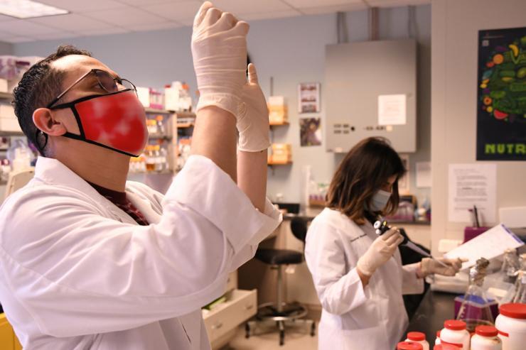 Hirschi Lab Research