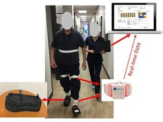 Impact of Diabetic Foot Ulcers and Offloading Footwear on Gait