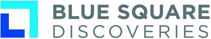 Blue Square Discoveries Logo