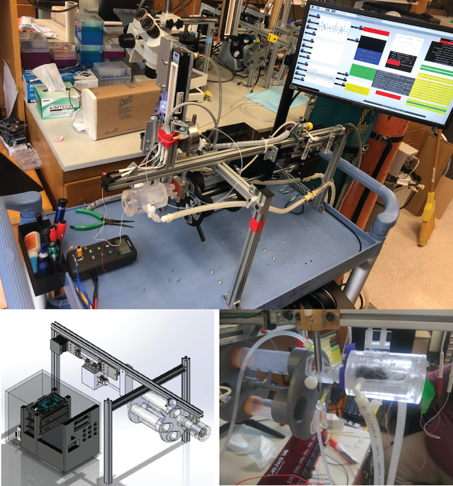 A Closed Loop Feature Detection Platform for Automated Neonate Cardio-Respiratory Measurements