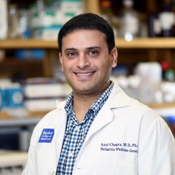 Dr. Atul Chopra, assistant professor of molecular and human genetics and molecular and cellular biology at Baylor College of Medicine.