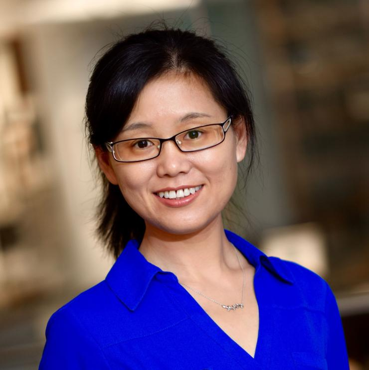 Dr. Meng Wang, associate professor in the Huffington Center on Aging and the department of human and molecular genetics at Baylor College of Medicine.