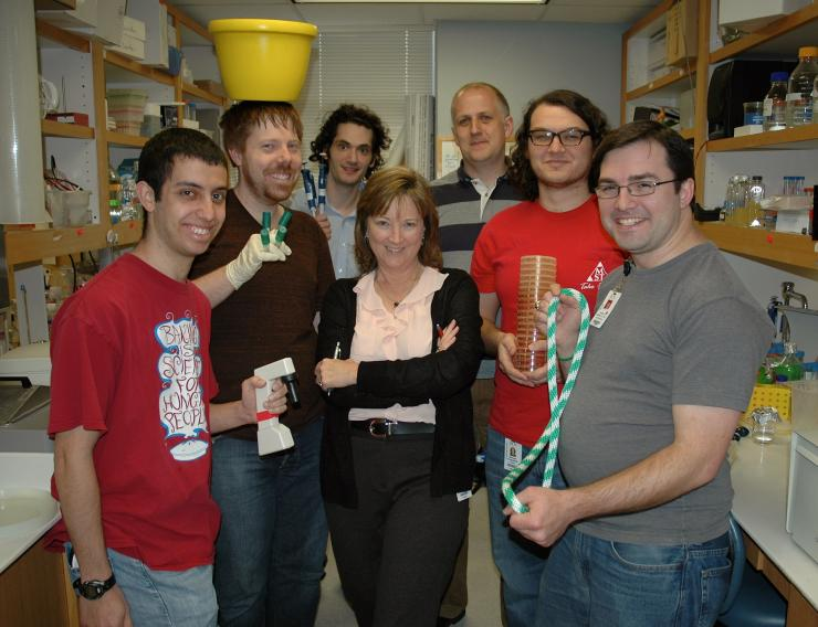 Lynn Zechiedrich, Ph.D., center, is shown with members of her lab in the Department of Molecular Virology and Microbiology at Baylor College of Medicine. Pictured are, from left, Ben Hornstein, Zachary Conley, Erol Bakkalbasi, Jonathan Fogg, Ph.D., Micha