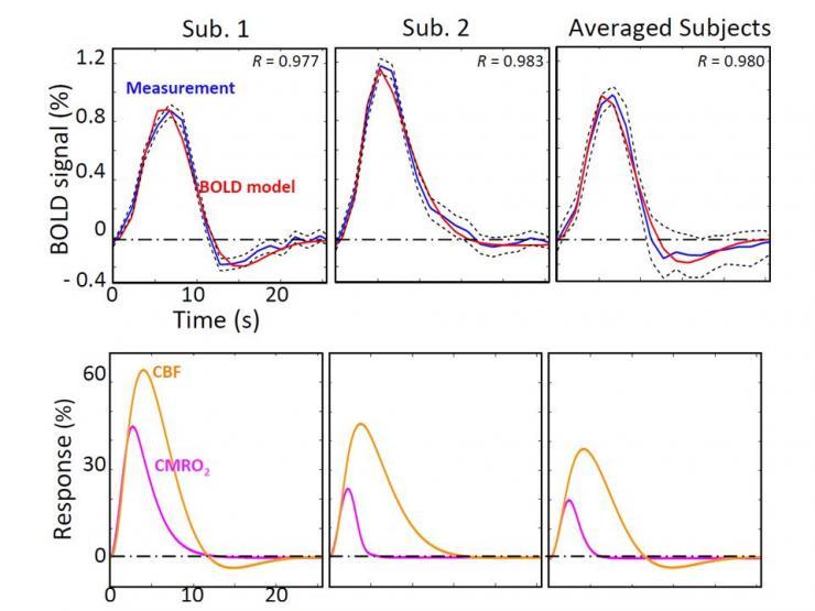 BOLD HRFs and predicted corresponding CBF and CMRO2