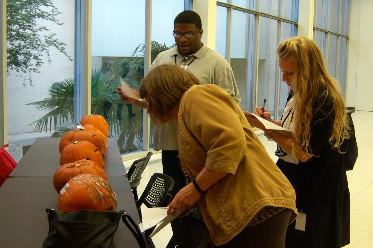 Judges carefully examine the meticulously carved entrees in the 2013 AGSD pumpkin carving contest.