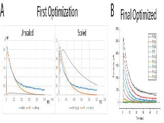 Figure 4: Optimization of Channel Model in TensorFlow. An object oriented TensorFlow based model incorporating Hodgkin and Huxley independent gating particles was constructed in Python3.