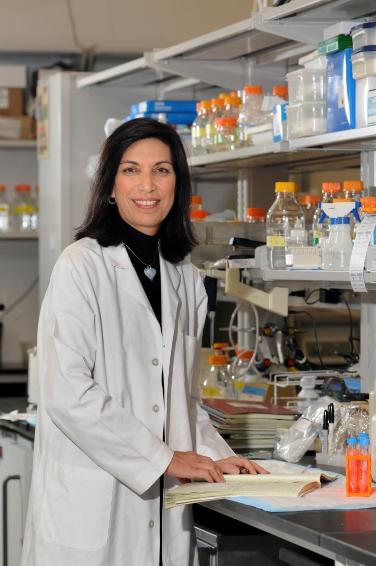 Dr. Huda Y. Zoghbi