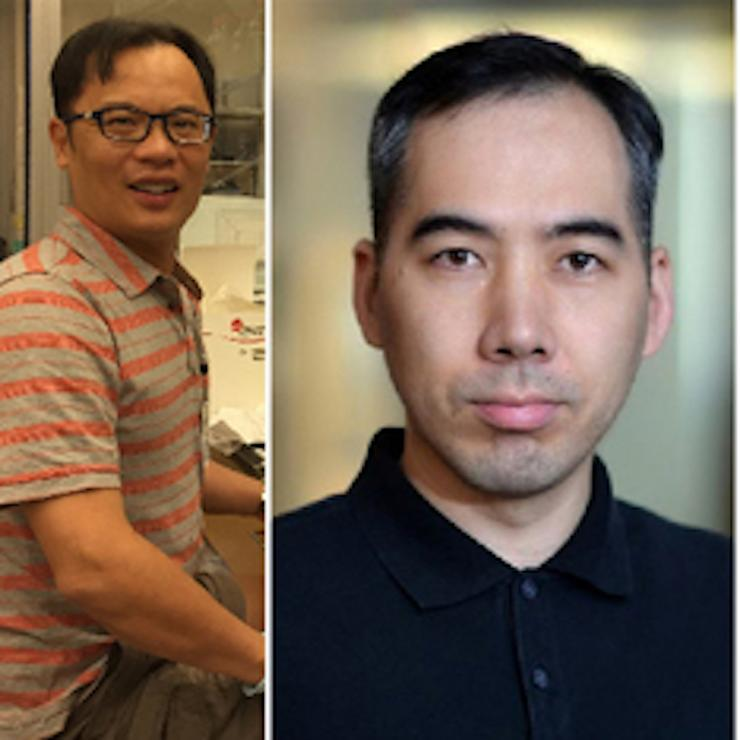 proteomics-team