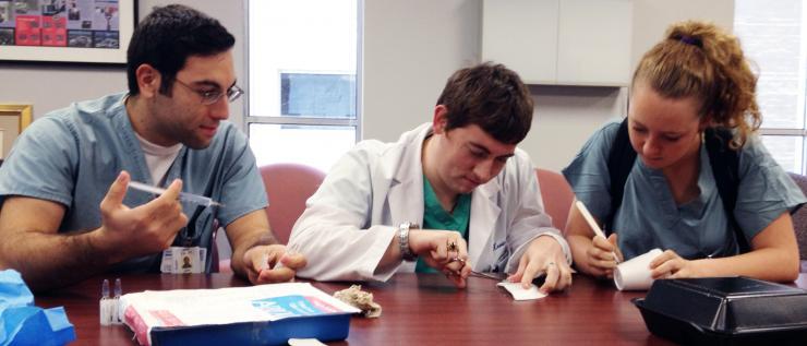 Jean Ghosn in the Summer Surgery Program