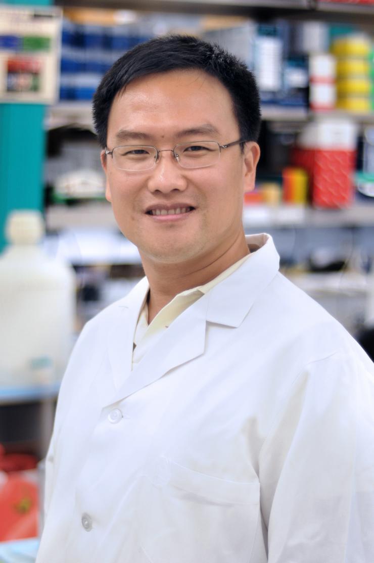 """Xiang """"Shawn"""" Zhang, Ph.D."""