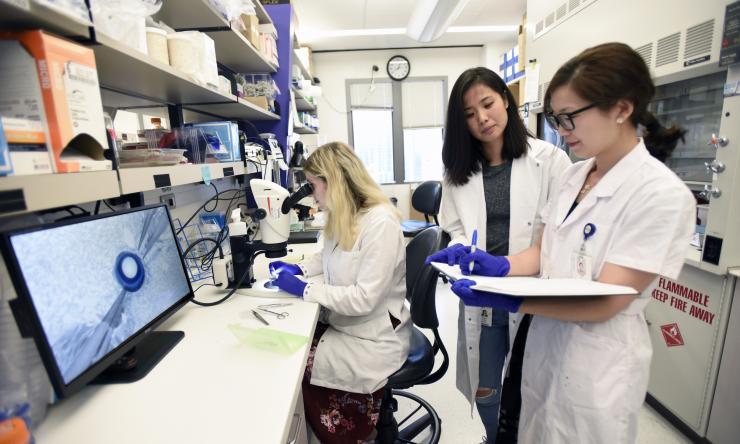 Samuel Lab Research