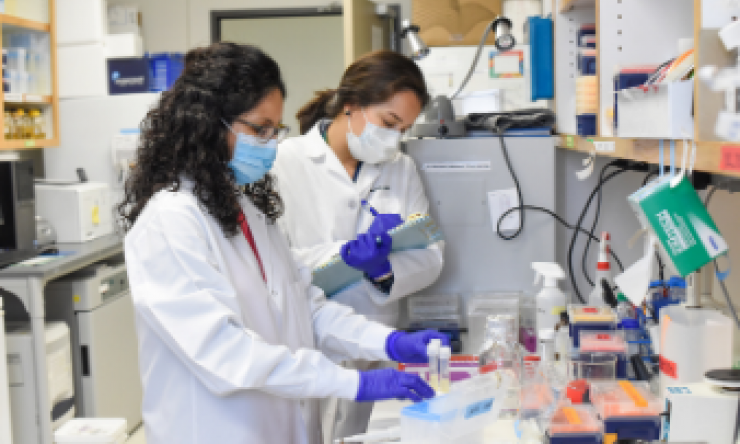 Two people analyzing lab samples.