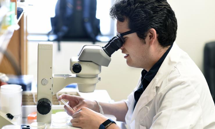 Zheng Zhou Lab Research