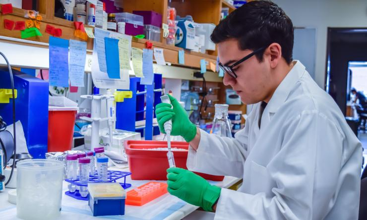Francisco Blanco is using state of the art molecular genetic techniques to study learning and memory.