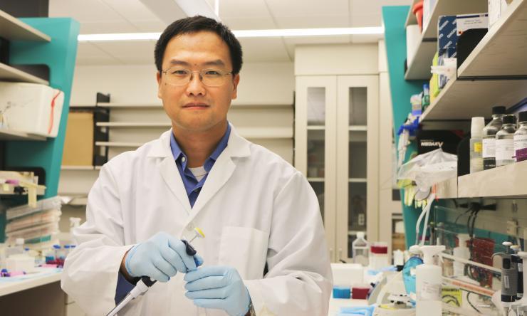 Dr. Xiang Zhang