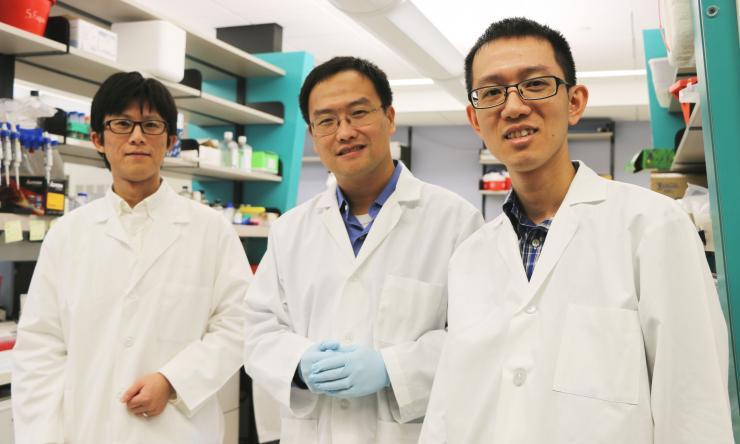 Members of lab