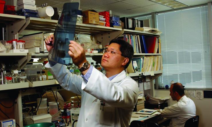 Dr. Brendan Lee at work in his lab.